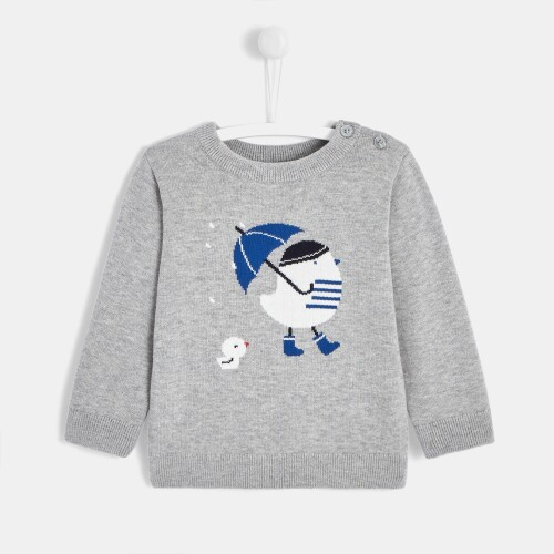 Toddler boy sweatshirt with chick print