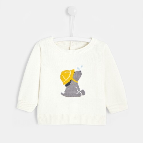 Baby boy Intarsia dog sweater